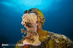 Jason deCaires Taylor-8317